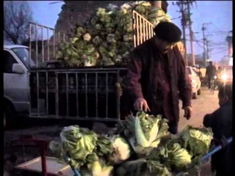 Chinese Cabbage-Documentary by director Tan Tan