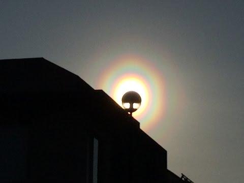 花粉光環は花粉が生み出す虹!