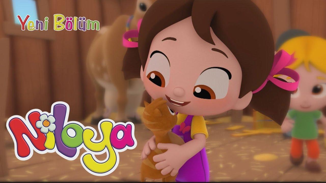 Niloya - Yeni Bölüm / Kedi Evi