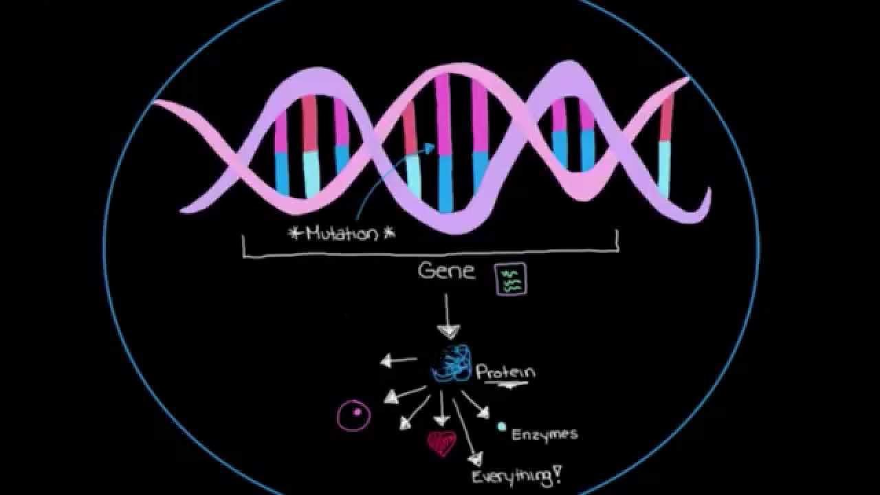 Khan Academy - Genetics and Parkinson's Disease - YouTube