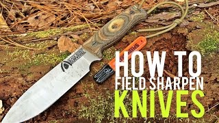 Sharpen Your Knife with a Speedy Sharp - Quick Tips