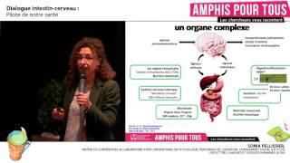 Amphis Pour Tous : Dialogue intestin-cerveau, pilote de notre santé