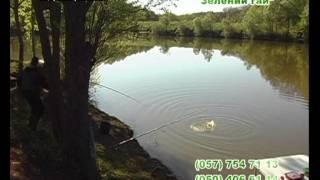 Рибалка в ''Зеленому Гаю'' .avi