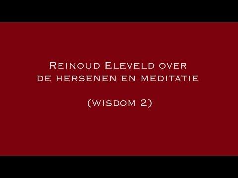 Reinoud Eleveld over de hersenen en meditatie (wisdom 2)