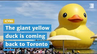 ICYMI: Here's everything you need to know about the giant yellow duck