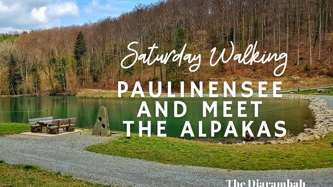 Download Saturday Walking to Paulinensee and Meet the Alpakas   Relaxing Nature Video