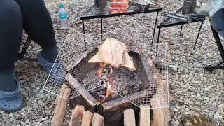 열기구이(숯불구이,생선구이,석쇠구이) - 부뷔캠