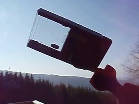 Obstfliegen Fangen fliegen fangen sanfte methode 554