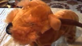 Собачка на поводке поет и виляет хвостом