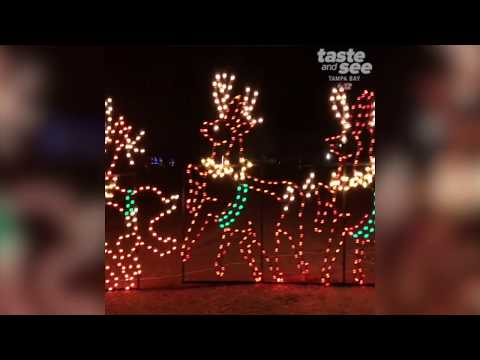 Wonderland of Lights at the Hillsborough County Fair Grounds