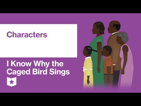 i-know-why-the-caged-bird-sings-by-maya-angelou-|-characters