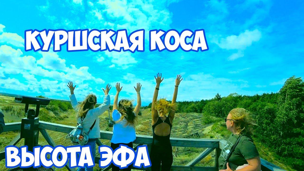КУРШСКАЯ КОСА 2020. Дюны. Высота ЭФА. Экскурсия на Куршскую косу. Национальный парк