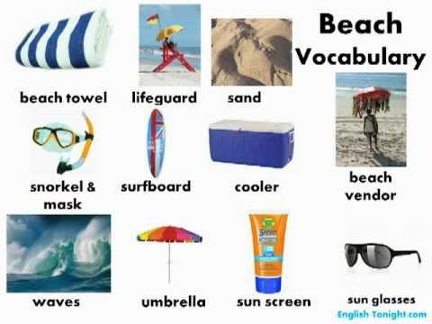 Learn English - English Vegetable Vocabulary - YouTube