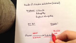 Disorders of Galactose metabolism- sorbitol