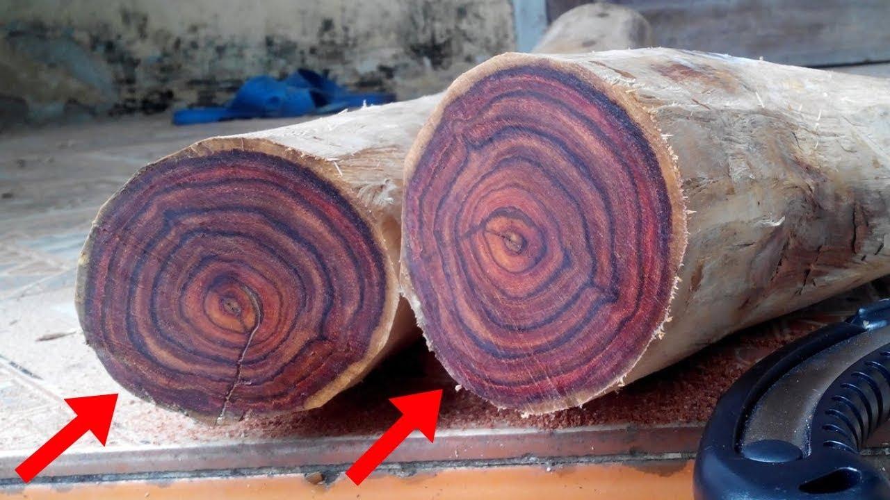 """Vì sao gỗ sưa được coi là loại gỗ vương giả? Vân gỗ sưa đẹp như """"nhan sắc hoa hậu"""""""