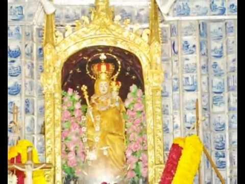 Annai Velankanni Shrine Besantnagar Roman Catholic Churches