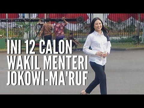 Presiden Jokowi Panggil 12 Calon Wakil Menteri Ke Istana, Ini Daftarnya