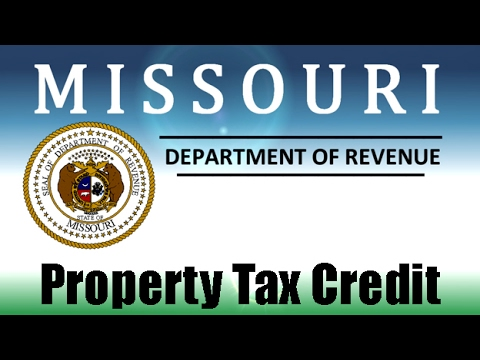 Property Tax Credit