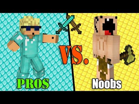 Incredibly STUPID Noobs VS. SUPER Pros -...