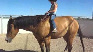 5 year old girl riding horse Bareback & Bridleless - Sianna & Titan