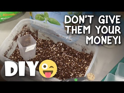 Seed Starting Potting Mix Test/Review: Miracle Gro, Espoma, DIY (Organic Vs Synthetic) Best & Worst