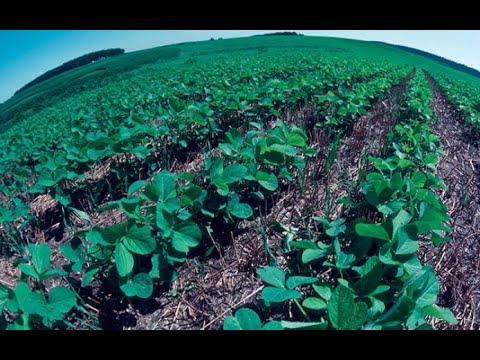 Agro-ecology: Helping Subsistence Farmers to Reap Maximum Yields