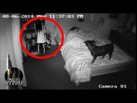 Download Videos Reales de Actividad Paranormal Vol 1 l Pasillo Infinito