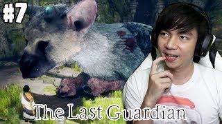 Terpisahkan Sementara - The Last Guardian Indonesia - #7