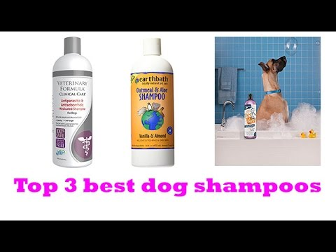 The Top 3 Best Dog Shampoos To Buy 2017 | Dog Shampoos Reviews