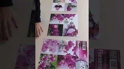 Самозалепващи стикери за фаянсови плочки Дзен Орхидеи