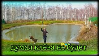 Осенняя рыбалка в своём пруду
