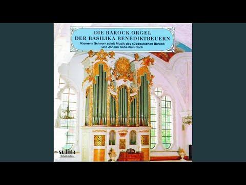 BWV 549a: Praeludium Und Fuge In D-moll