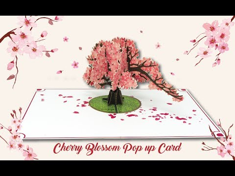 Paper Love Cherry Blossom Pop Up Greeting Card