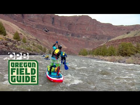 Paddleboarding The John Day River