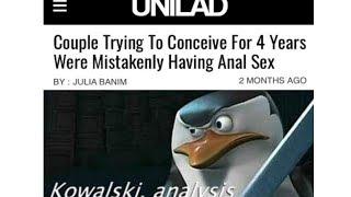 More Kowalski, Analysis Memes