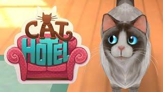 Игра CatHotel - отель для кошек