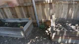Diy Home Improvement. How To Build Cheap Raised Garden Beds. Organic Vegetables