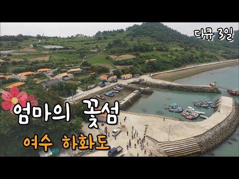 [다큐3일]엄마의 꽃섬, 여수 하화도 by KBS