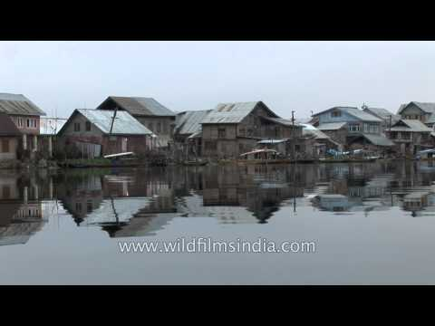 Shikaras lined up in the Dal Lake
