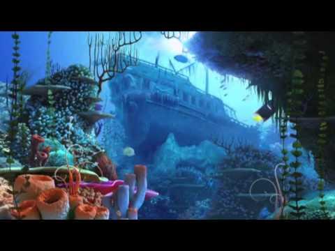 medwyn goodall coral islands
