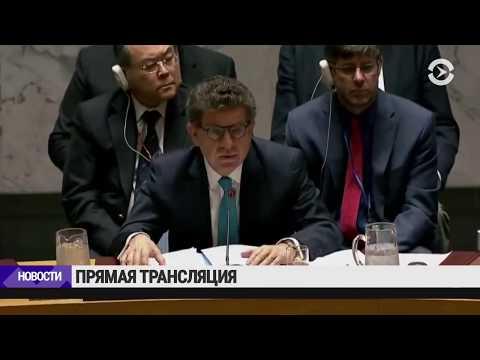 Совбез ООН после ударов по Сирии | 14.04.18