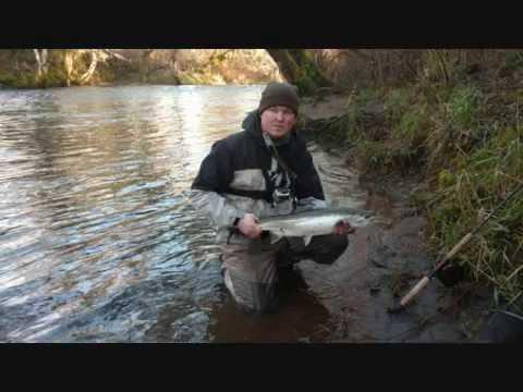 Alsea steelhead fishing chrome diggers youtube for Alsea river fishing report