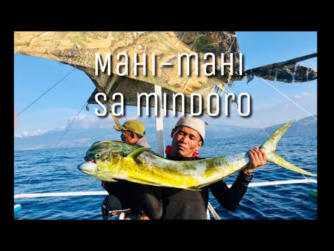 FISHING @ ABRA DE ILOG (PART 2) DORADO OR DOLPHIN FISH !!