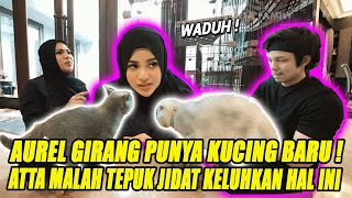 Aurel Hermansyah Girang Punya Kucing Baru, Atta Halilintar Malah Tepuk Jidat Keluhkan Hal Ini !