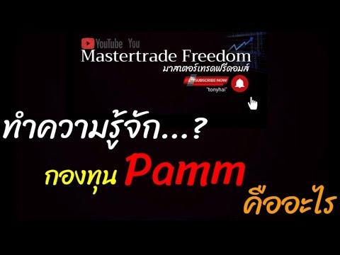 ทำความรู้จัก...? กองทุน Pamm คืออะไร