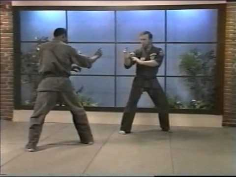 Kenpo Karate Ed Parker American Kenpo Sophisticated Basics Vol 2