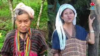 Indigenous Peoples' rights under threat from oil palm plantations in Tanintharyi, Myanmar (Burmese)