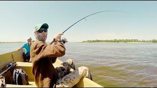 Только в Астрахани на спиннинг может быть такая рыбалка!