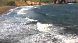Surf Lemonade