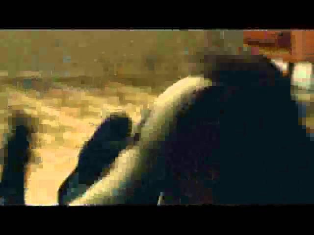 קירות - קדימון - סרטו של דני לרנר עם נינט טייב